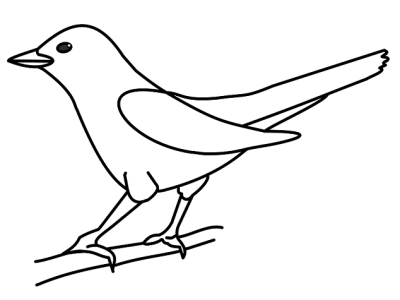 How to draw a bird lockdown art activity