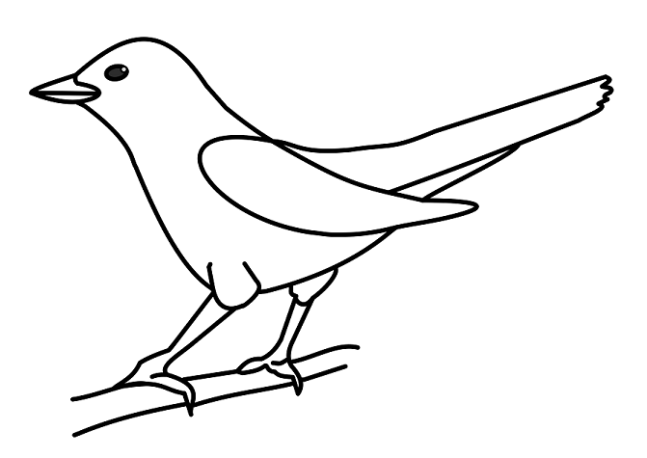 How to draw a bird lockdown art activity