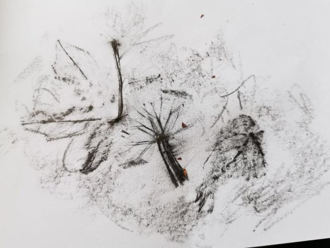leaf rubbing art activity